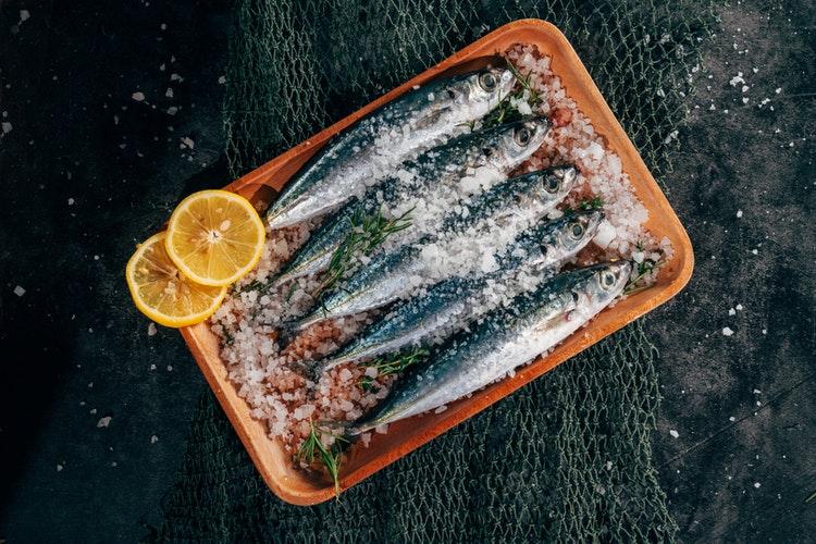 トレイに入った5匹の魚